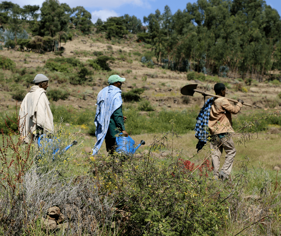 Three men, holding tools and watering cans, walk in a line through a hilly landscape in central Ethiopia.