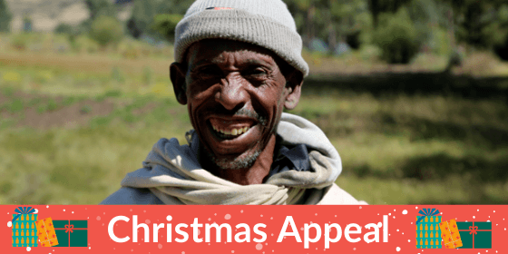Christmas Appeal Banner